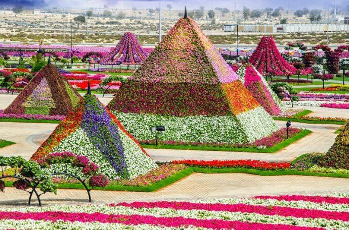 Цветочные пирамиды в парке цветов в Дубае, ОАЭ
