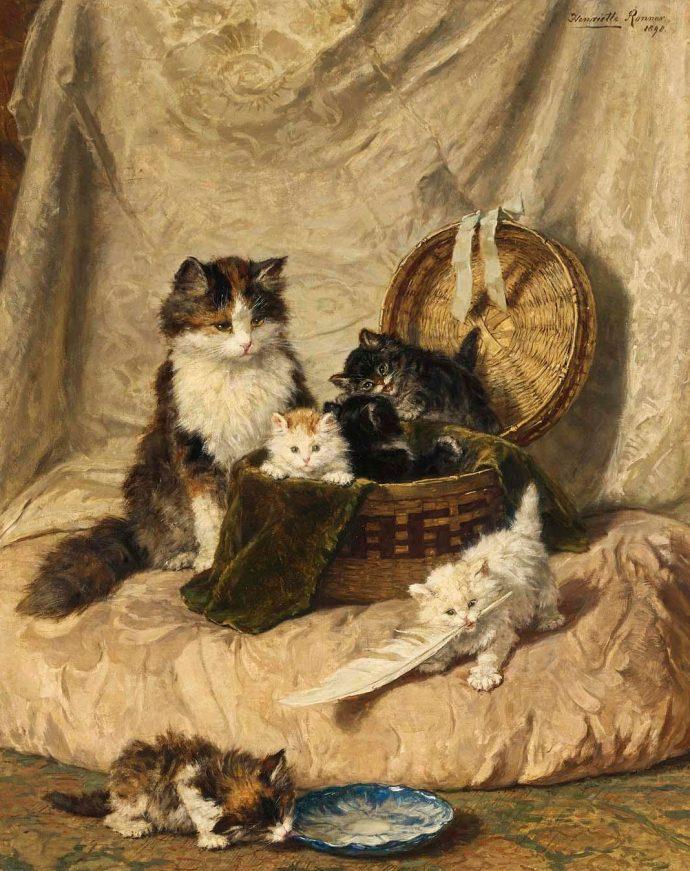 картины котов
