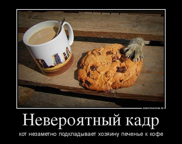 62808107_neveroyatnj-kadr