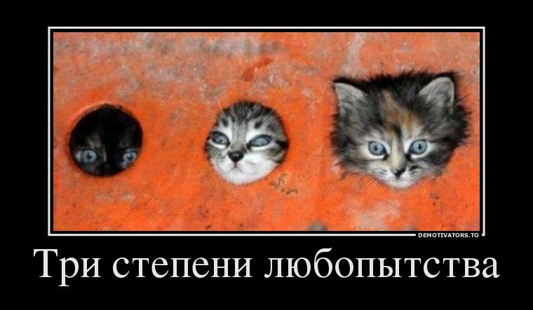 67246397_tri-stepeni-lyubopyitstva