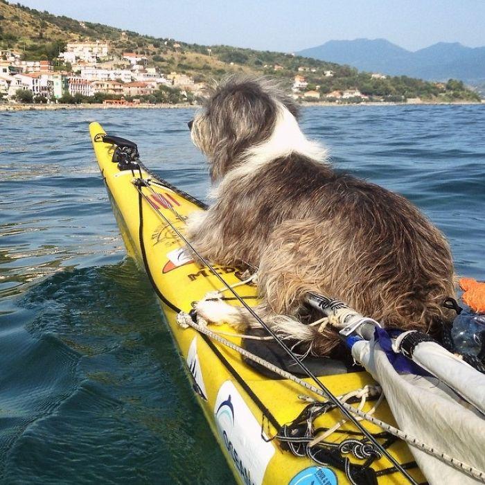 Испанец путешествует с собакой на лодке