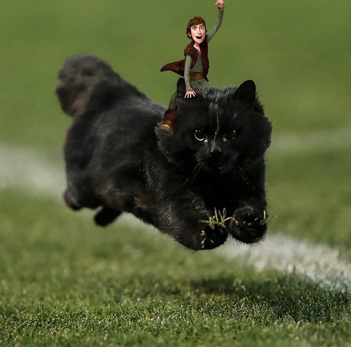 flying-cat-rugby-game-photoshop-battle-12-5784a389063ae-png__700
