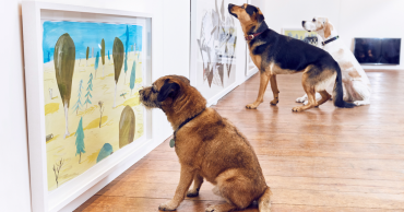 world-first-dog-art-exhibition-dominic-wilcox-london-fb