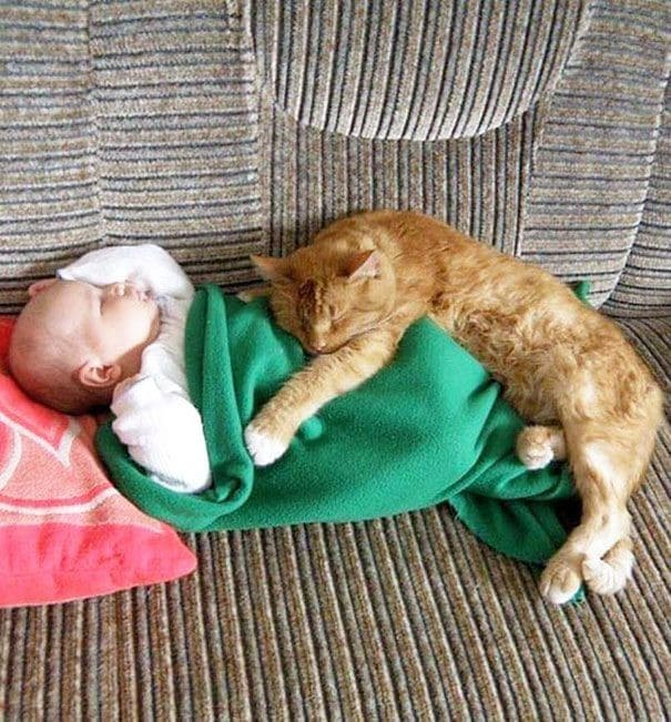 kids-with-cats-17-605