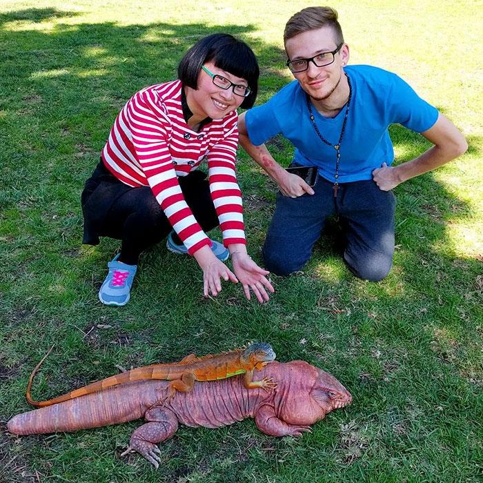 Я симпатичная! Улыбчивая ящерица размером с мейн-куна любит всех подряд :) рис 14