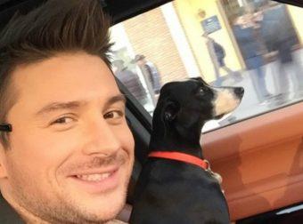 Достойно уважения! Сергей Лазарев «влюбился» в беспородную собачку из приюта и забрал её домой!