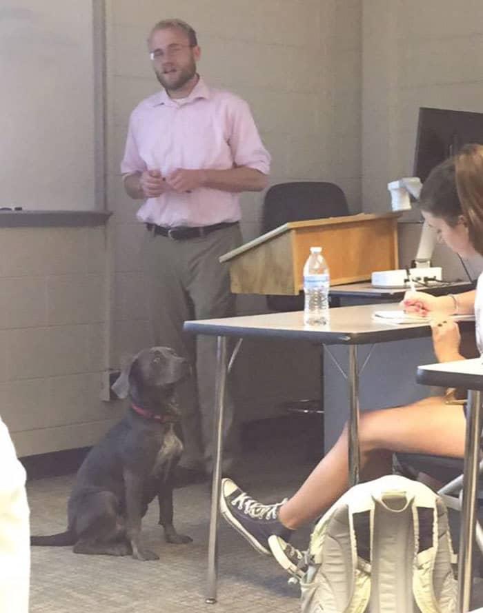 student-professor-dog-hurricane-irma-7