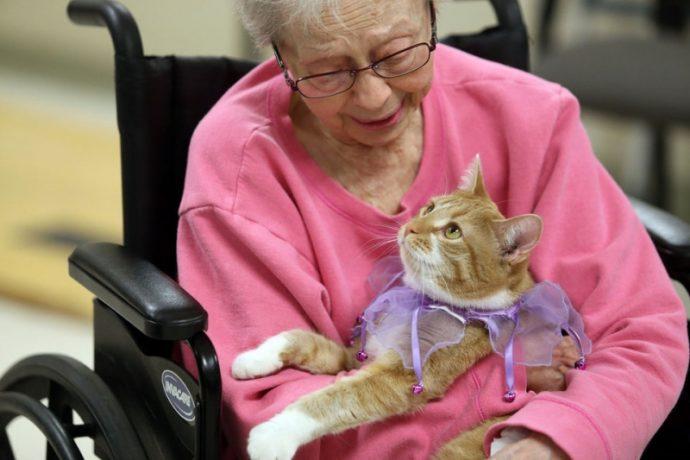 Старушка с котом на руках