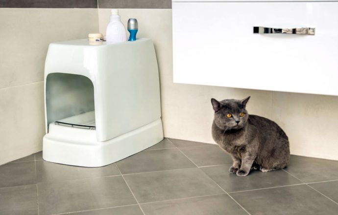 CATOLET-Smart-Automatic-Litter-Box-03