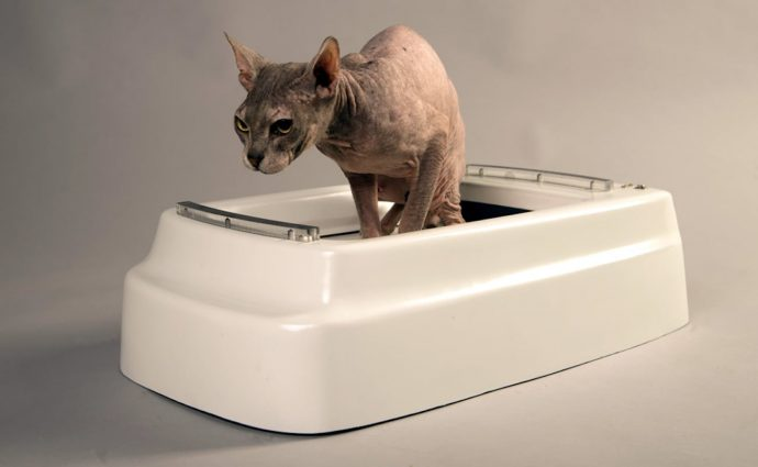 CATOLET-Smart-Automatic-Litter-Box-06