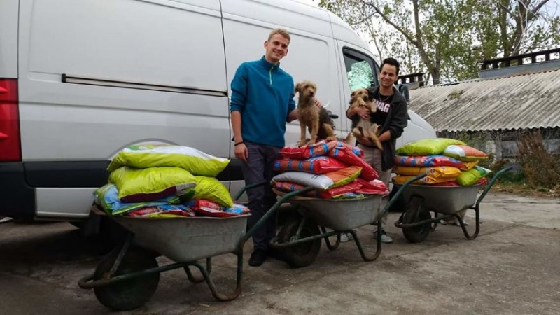 FotorCreated
