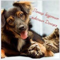 Помощь бездомным животным Донецк