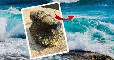 По воде плыла странная бутылка. Когда рыбак выловил её - то был просто сражён увиденным!