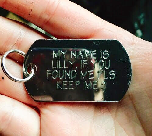 hand-holding-dog-tag