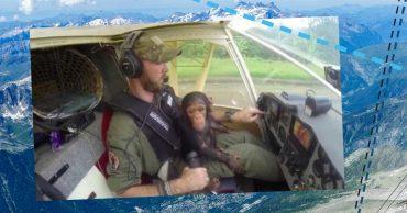 Видео, покорившее женщин! Мужественный лётчик, качающий на коленях любопытного детёныша шимпанзе... среди облаков!
