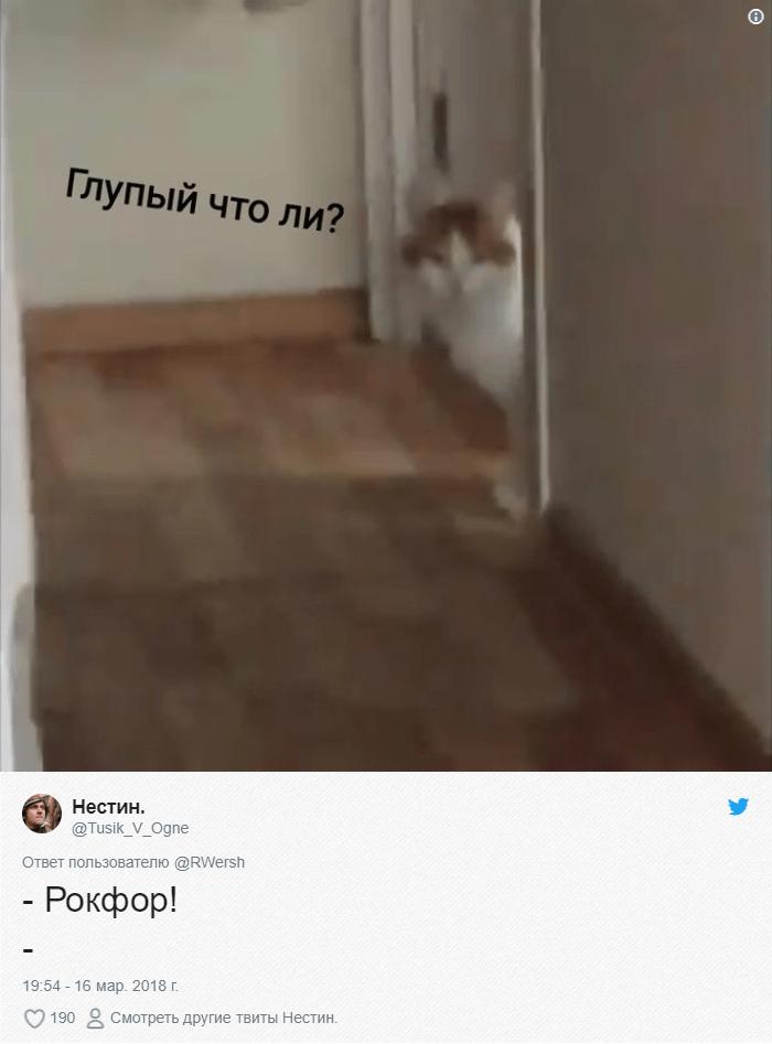 bez-nazvaniya-1-7 (1)