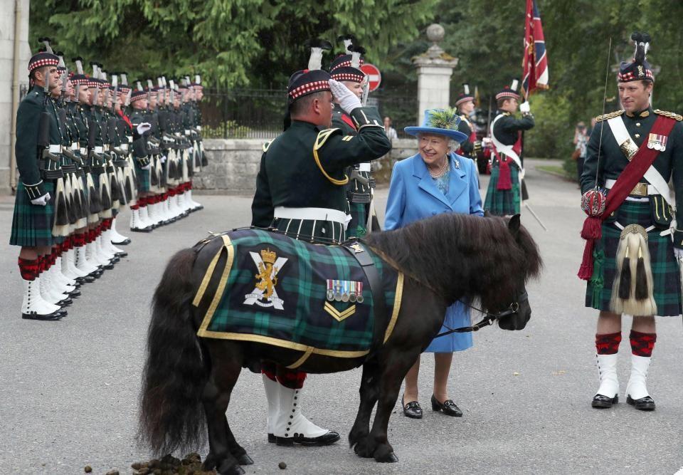 шотландский полк перед королевой