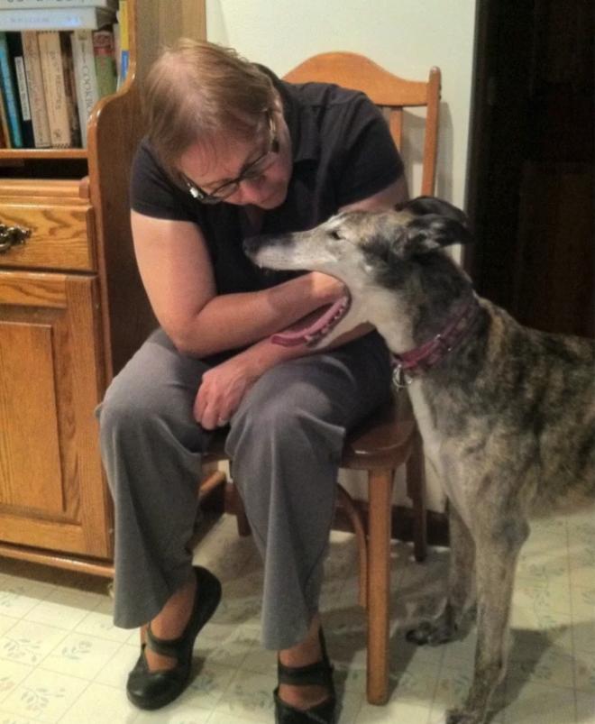 собака держит руку во рту