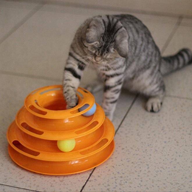 Кот играет шариком
