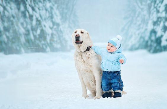 собака и ребенок гуляют