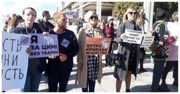 Марш в защиту прав животных: судьба четвероногих нам небезразлична!