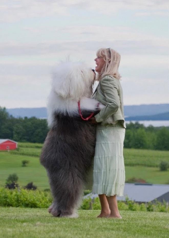 Женщина и ее пес