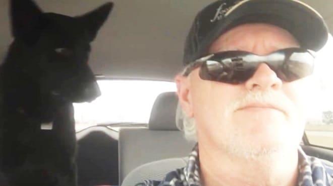 Мужчина и пес в машине