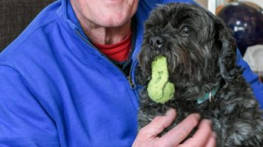 Пёс вывел хозяина из комы, удивив врачей. Он увидел неподвижного мужчину и стал громко лаять...