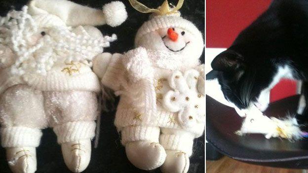 Кот и игрушки