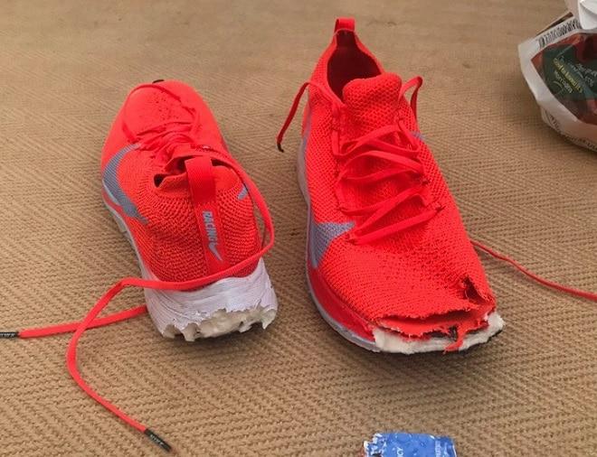 Сгрызенные кроссовки